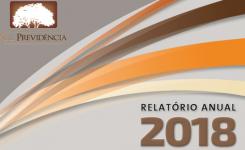 Relatório Anual de Informações(RAI) – 2018