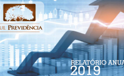 Relatório Anual de Informações(RAI) – 2019